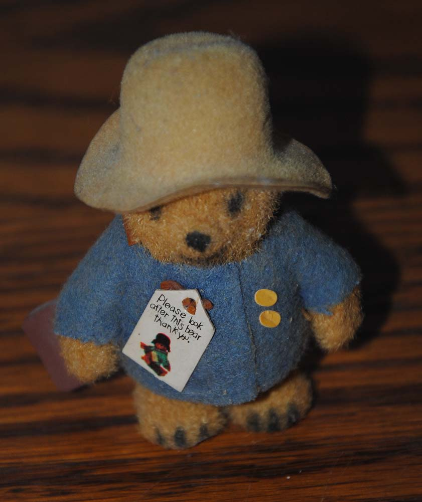 sm Mini Paddington 2
