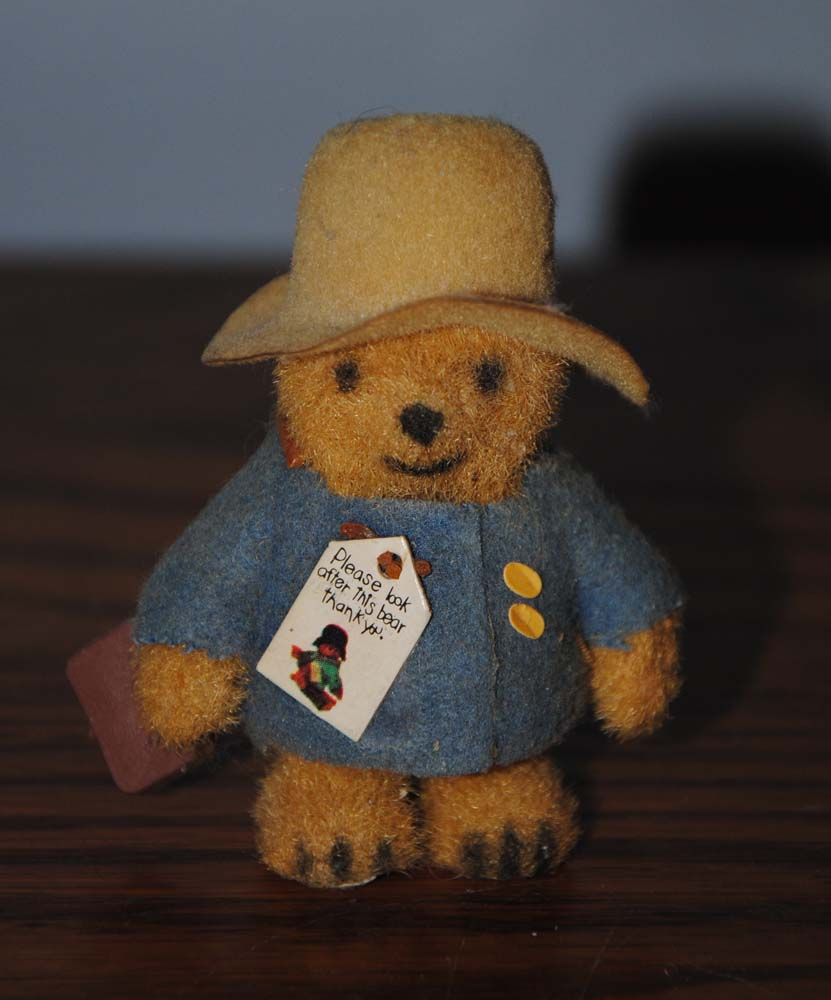sm Mini Paddington 3